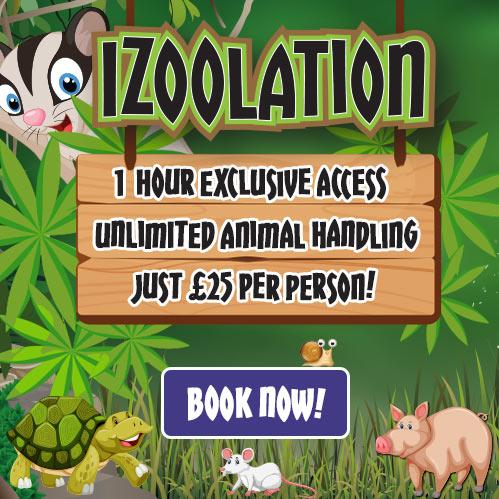 Izoolation