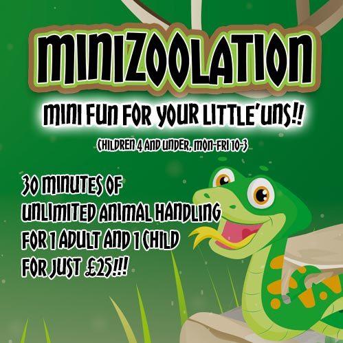 Minizoolation