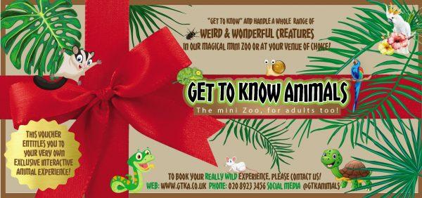 Animal Handling Gift Voucher