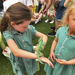 Schools and Nurseries